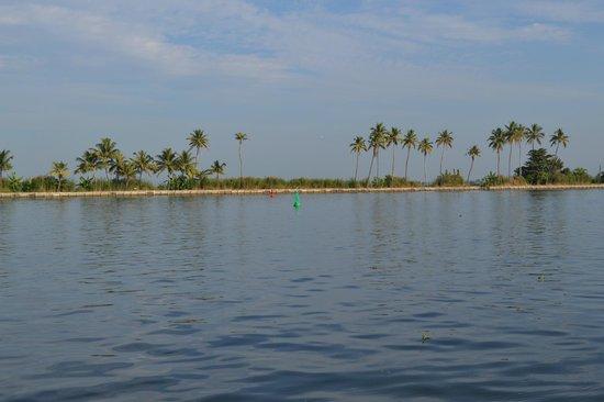Abad Whispering Palms Lake Resort: Lake view from the resort