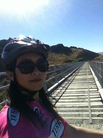 Otago Central Rail Trail: the rail Trail