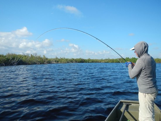 The Western Caribbean Fly Fishing School: Playing the monster Tarpon