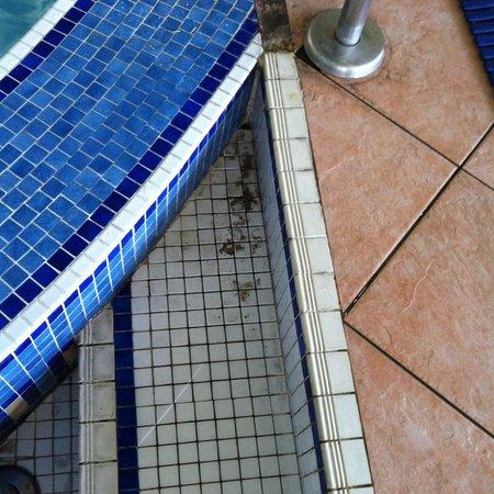 Radisson Blu Hotel & Spa, Galway: schlecht gereinigter Pool