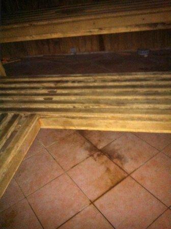 Radisson Blu Hotel & Spa, Galway: schlecht gereinigter Boden in der Sauna