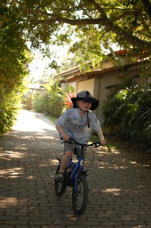 Secret Garden Chiang Mai : Driveway perfect for the kids to ride bikes.