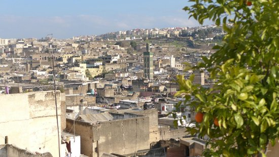 Riad Rcif: view over Fes Medina, from terrace Rcif