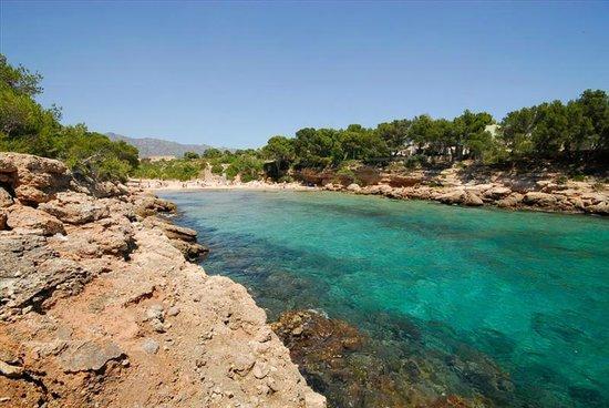 L'Ametlla de Mar, إسبانيا: Cala Forn