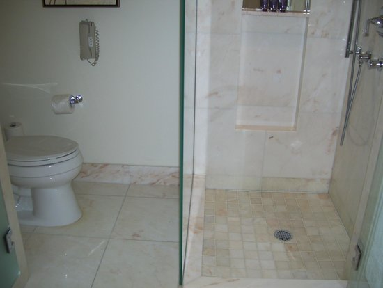 The Ritz-Carlton, Toronto: shower and loo