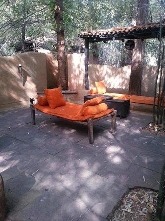 Mahua Kothi : Outside patio