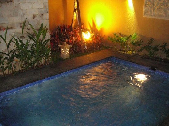 Gino Feruci Villa Ubud: Private Pool