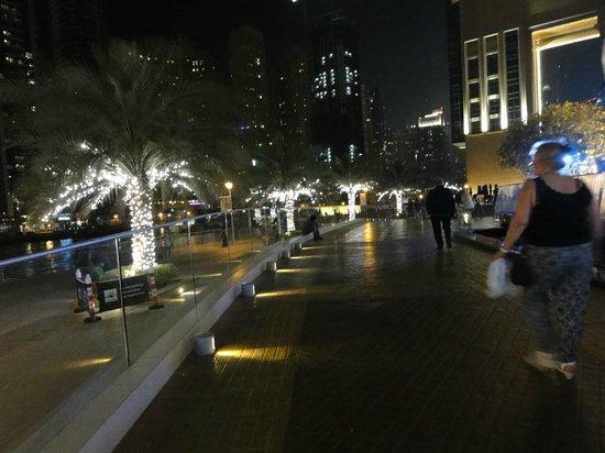 Lotus Hotel Apartments & Spa, Dubai Marina: opposite bank of lotus