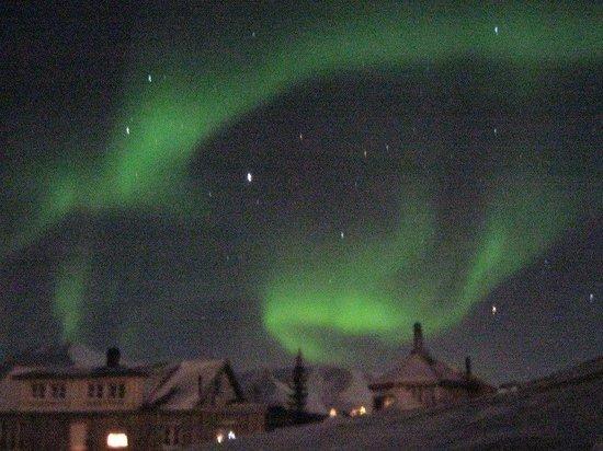 Svalbard Villmarkssenter - Day Tours: Northern Lights from our Wilderness Centre