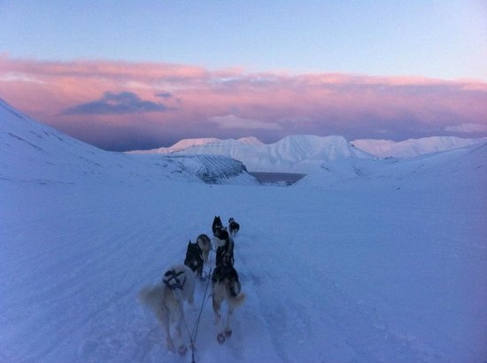 Svalbard Villmarkssenter - Day Tours: Overview longyearbyen