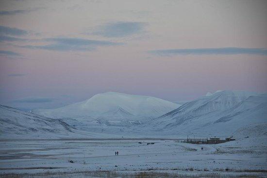 Svalbard Villmarkssenter - Day Tours: Photo: Tommy Simonsen