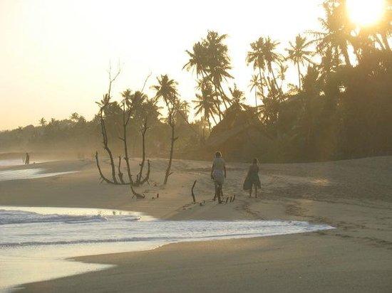 Lagoon Paradise Beach Resort : Tramonto