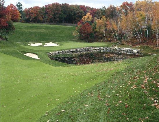 Red Tail Golf Club: #18