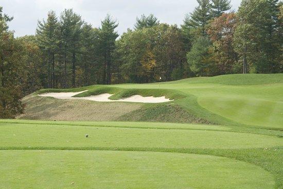 Red Tail Golf Club: #5