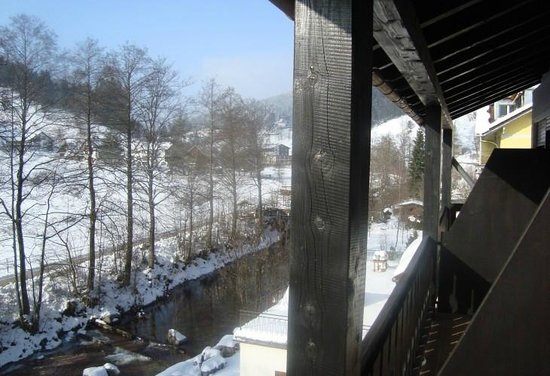 Hotel Schwanen: Вид с балкона на реку