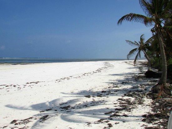 Zanzibar House: Beach