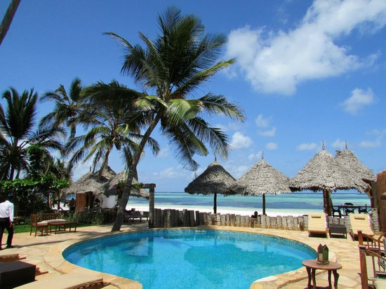 Zanzibar House: Piscina