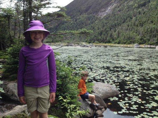 Appalachian Mountain Club High Huts: Natuers Backyard