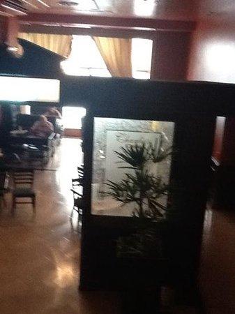 Hotel Carlos V: descansod del resto.