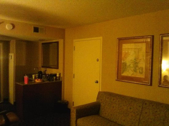 Embassy Suites by Hilton Atlanta - Airport : Typical Room 2