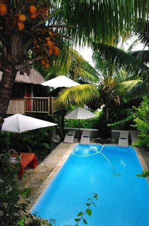 Villa Seewoo: Baumhaus /Pool