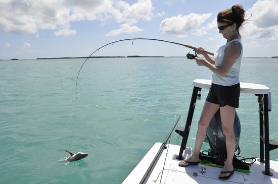 AWS Charters, Key West Flats Fishing: Bone fishing, Key West, FL