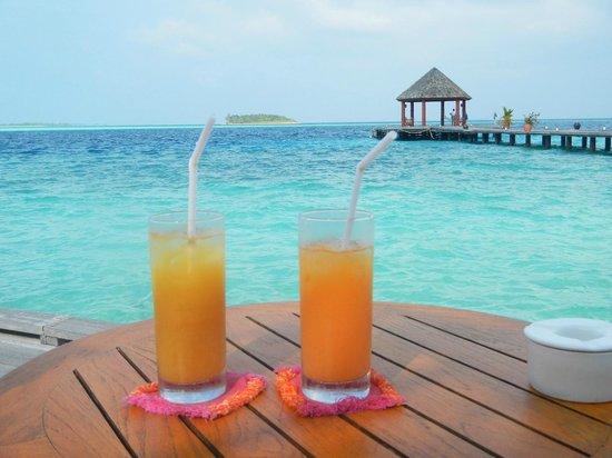 Komandoo Maldives Island Resort: Aussicht von der Bar