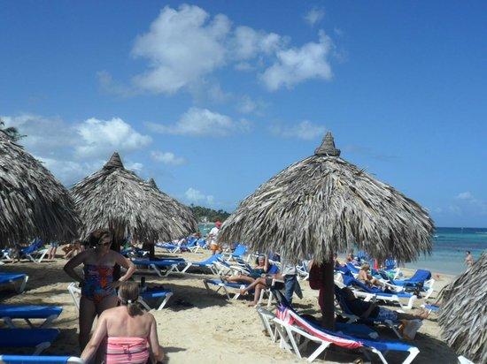 Grand Bahia Principe El Portillo: beach