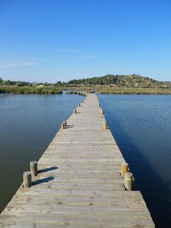 Demeure de Roquelongue : Promenade à Peyriac-de-Mer