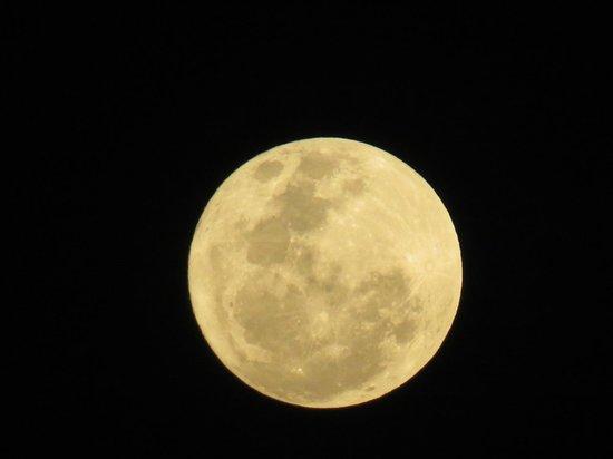 Blue Bay Curacao: Curacao moon