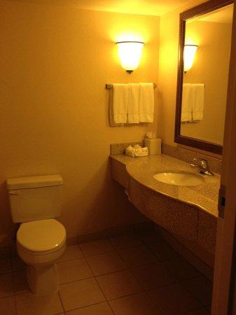 Hilton Garden Inn Washington DC / Greenbelt: Bathroom