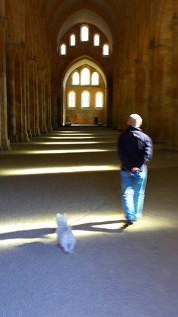 Abbaye de Fontenay : Otroligt stor och mycket hammal
