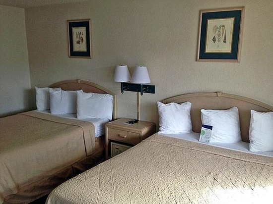 Motel 6 Fort Bragg: Double Guest Room