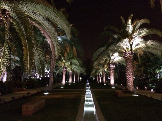Sofitel Rabat Jardin des Roses : Vue depuis la terrasse du lobby