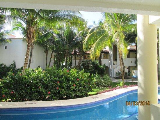 El Dorado Sensimar Riviera Maya: View from swim up room