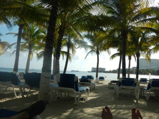 Occidental Costa Cancun : Beach chairs under the palms.