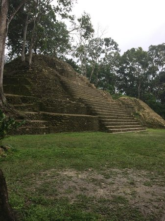 duPlooy's Jungle Lodge: Local Mayan Ruins in town
