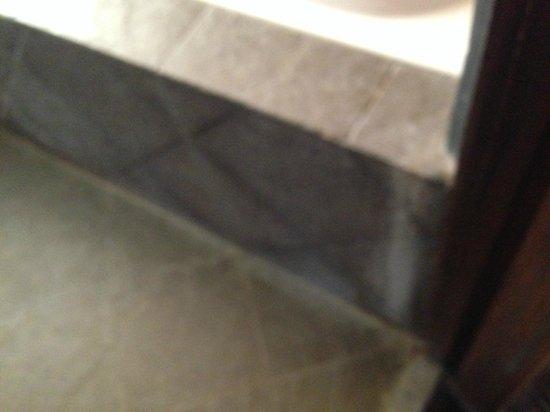 Villa Vang Vieng Riverside : Dirty bath