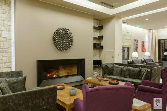 Levidi Suites : Lobby.