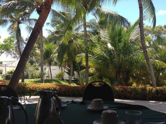 Hotel Deville Prime Salvador: Visto do café da manhã