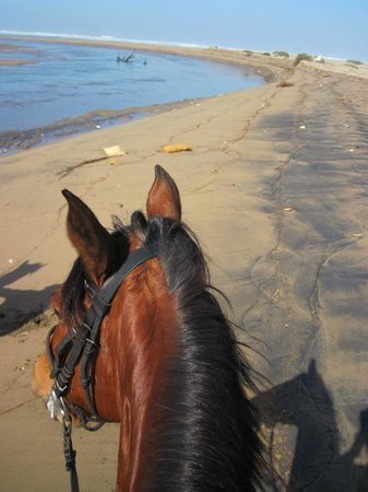Atlas Amadil Beach Aqua Sun : Riding going by taxi easy from the hotel