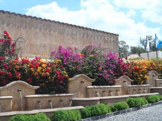 Camino Real Antigua: Entrance to the Camino Real