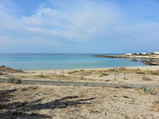 Spiaggia di Montedarena