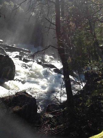 Union Creek Resort : Mill Creek Falls Trail