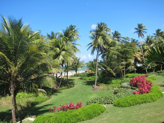 The St. Regis Bahia Beach Resort: grounds outside of our suite