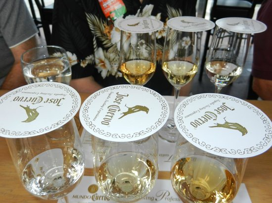 Discover Mexico Cozumel Park: Actual tequila tasting