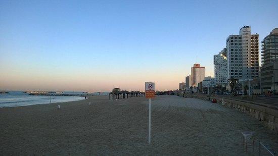 Metropolitan Hotel : Early morning on Tel Aviv beach