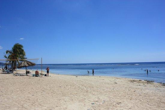 Club Amigo Carisol Los Corales: the beach