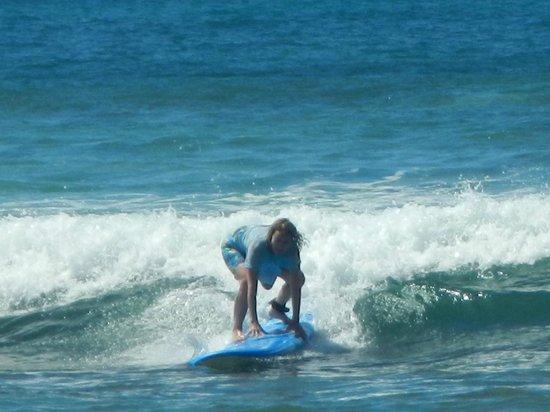 Garden Island Surf School