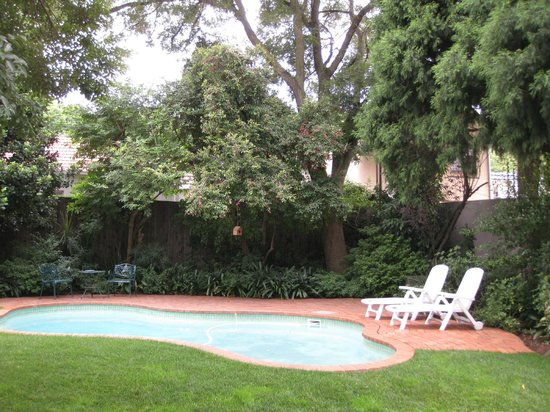 Rosebank Lodge Guest House: Rosebank Lodge pool and garden